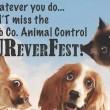 FureverFest[1]