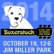 Boxerstock14-SQ-500[1]