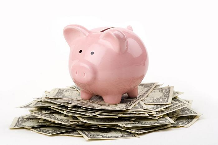 Piggy_on_Money11.jpg