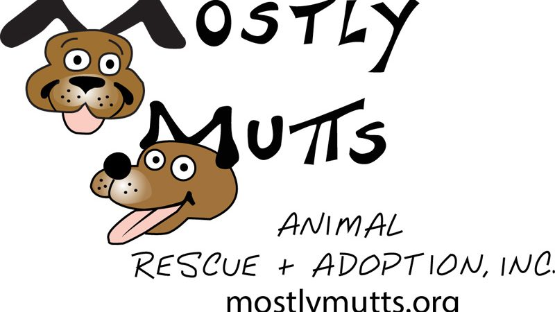 MOSTLY MUTTS ANIMAL RESCUE OPENS NEW SHELTER