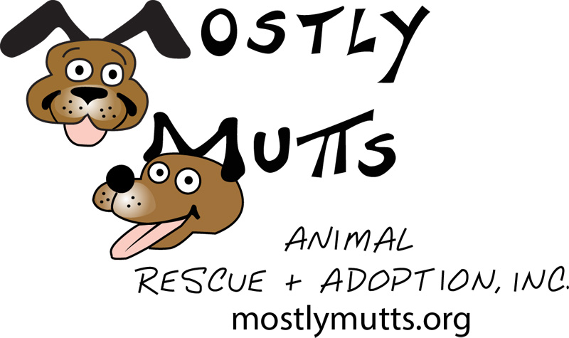 Image result for mostly mutts