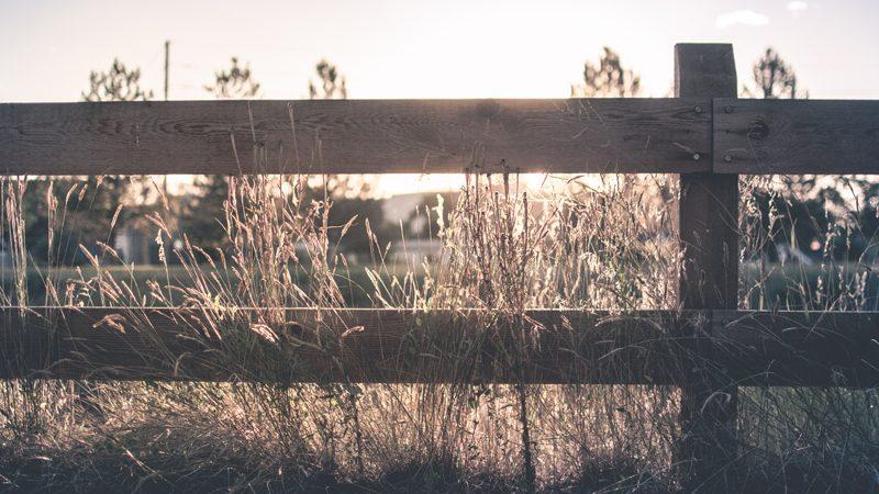 Five Tips for a Happy Neighborhood
