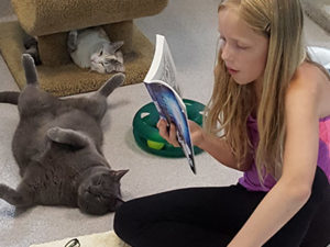 Good Mews Animal Foundation - Reading to Cats