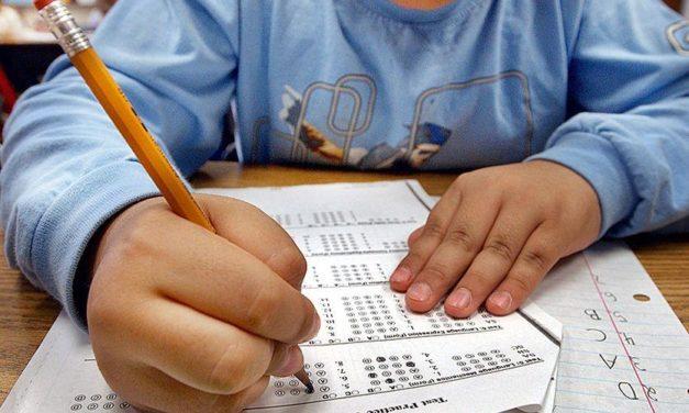 EDUCATION STATS: EAST COBB ELEMENTARY SCHOOLS