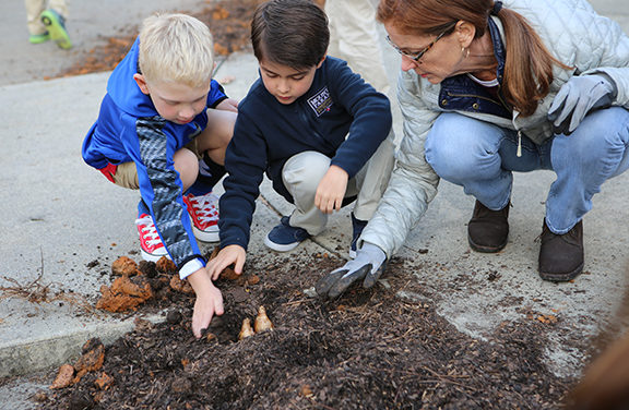 MPCS STUDENTS PLANT MORE THAN 500 DAFFODIL BULBS TO COMMEMORATE HOLOCAUST