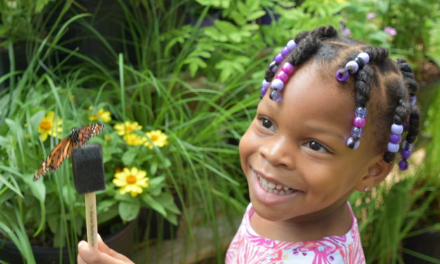 Facebook Friday Freebie!   Enter to Win 6-pack of Tickets to the Butterfly Encounter at the Chattahoochee Nature Center!