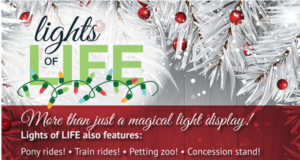 Holiday Happenings 2020: COVID Style 16