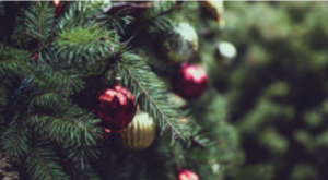 Holiday Happenings 2020: COVID Style 28