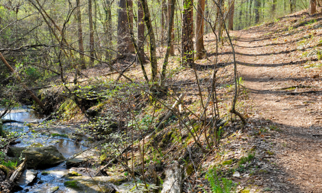 CHATTAHOOCHEE RIVER NATIONAL RECREATION AREA INVITES PUBLIC INPUT ON PRELIMINARY TRAILS MANAGEMENT PLAN